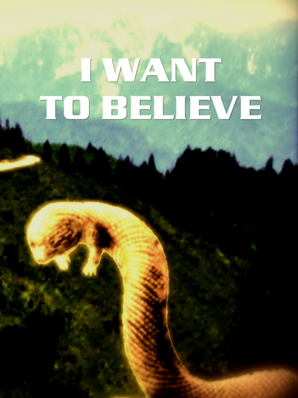 Poster: Tatzelwurm – I want to believe
