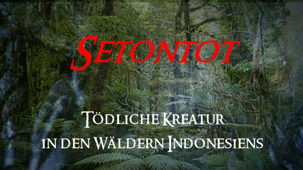 Setontot