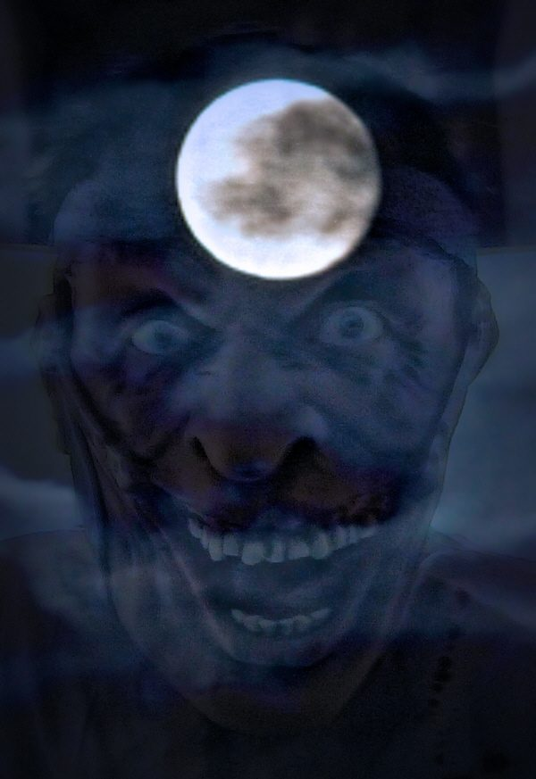 Night Whisperer