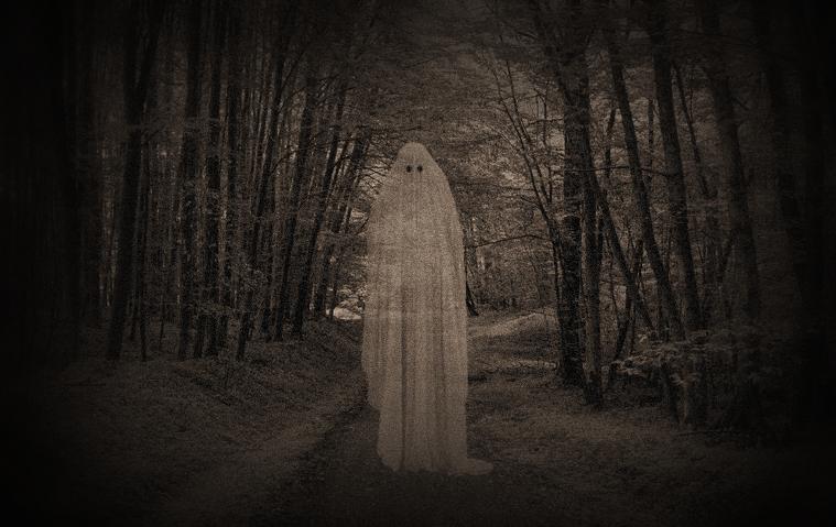 Geist im Wald