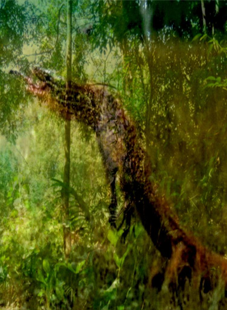 Setontot - Geist des Waldes