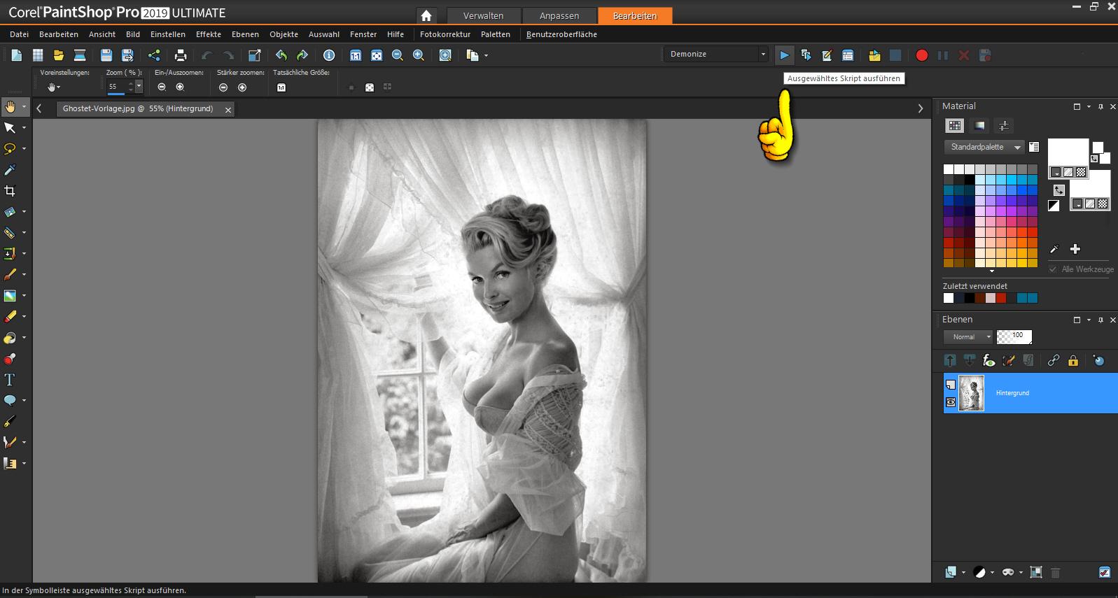 Skript-Menü in PaintShop Pro