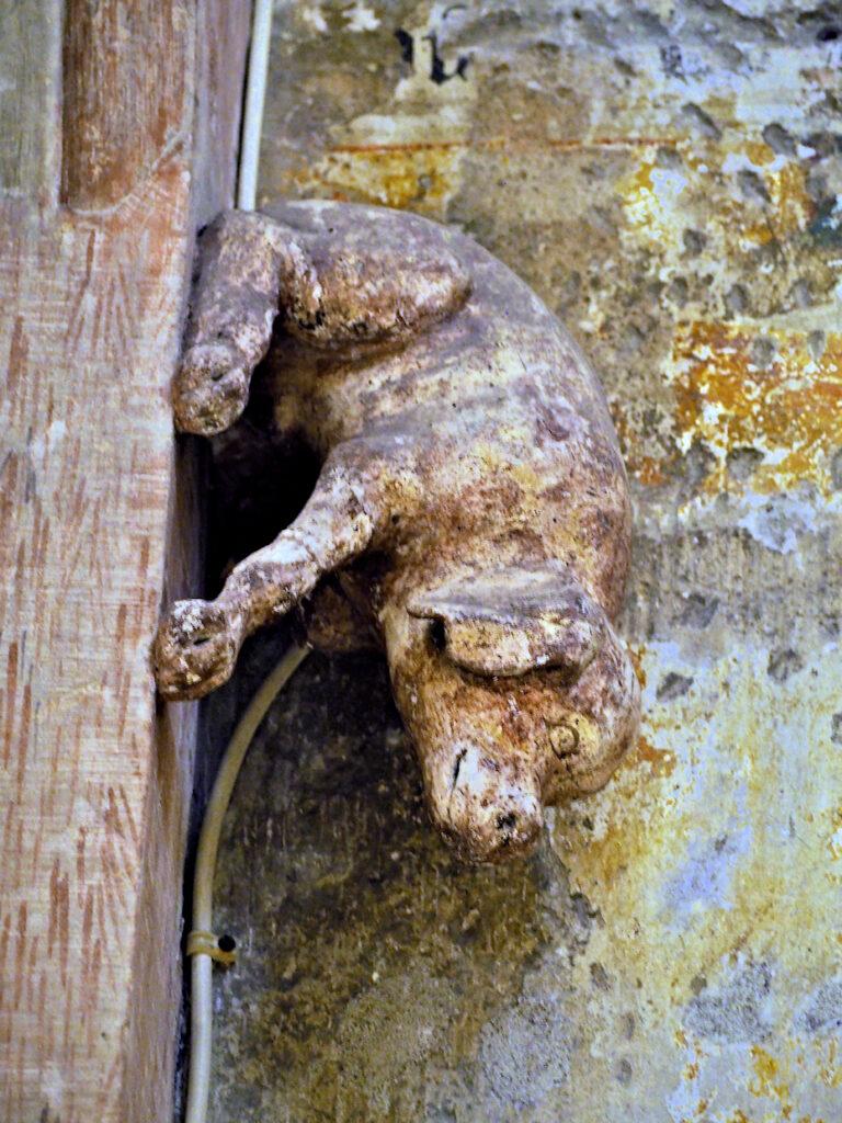 Schwein im Dom zu Regensburg