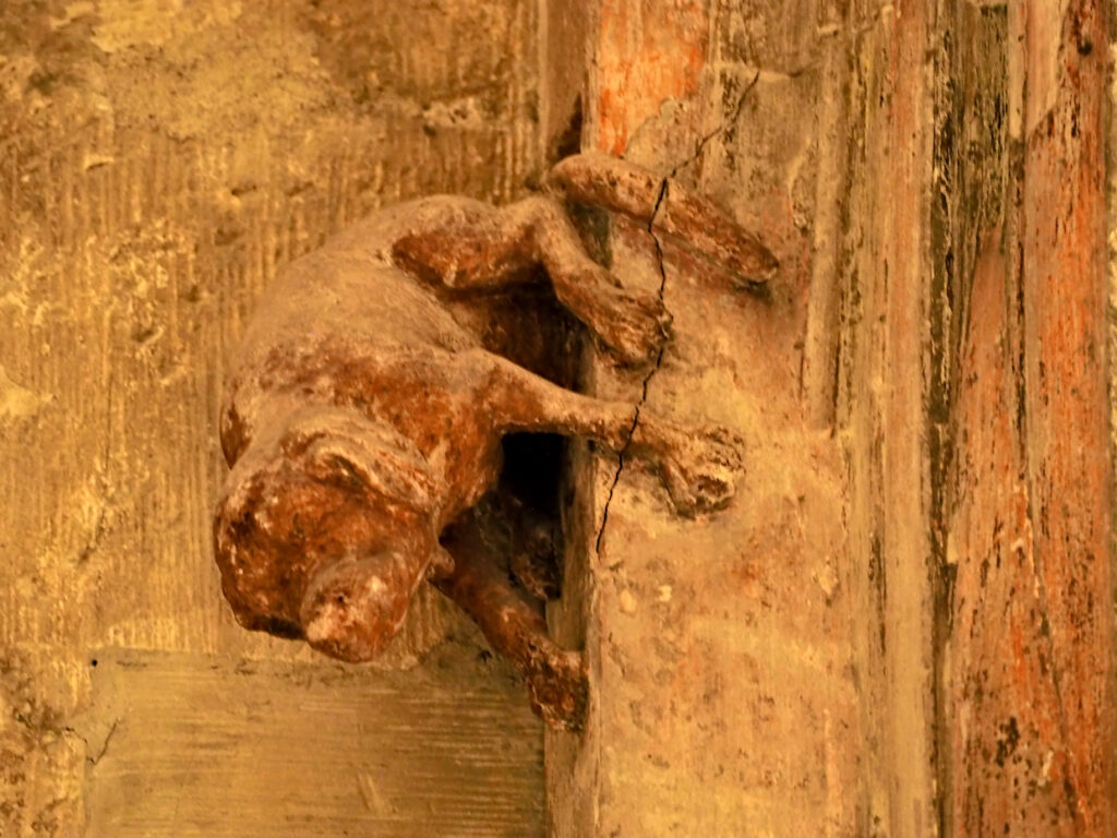 Schweinehund im Dom zu Regensburg