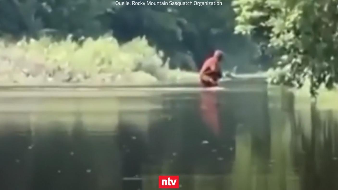 Videostandbild
